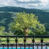 Blick vom Ferienhaus Ca Mattei auf die Hügel der Marken