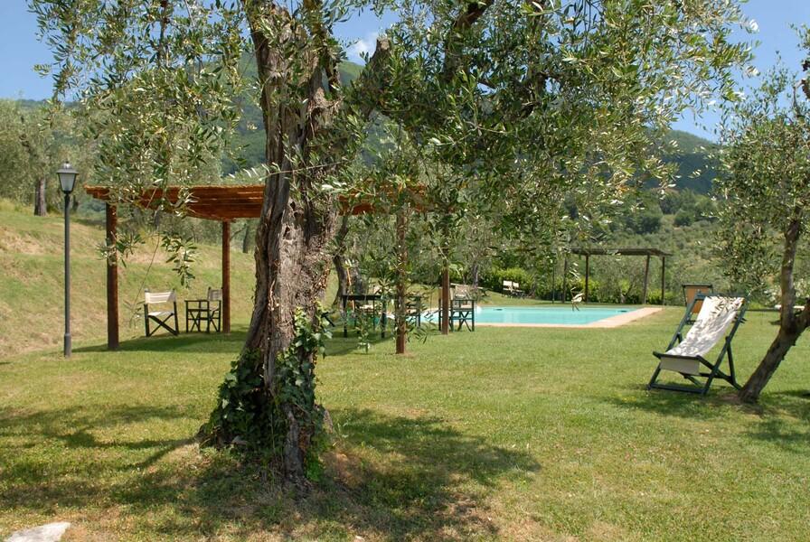 Ziehen Sie im wunderschönen Pool des Le Casine Ihre Runden und lassen Sie Ihren Blick in die herrliche Landschaft der Toskana schweifen