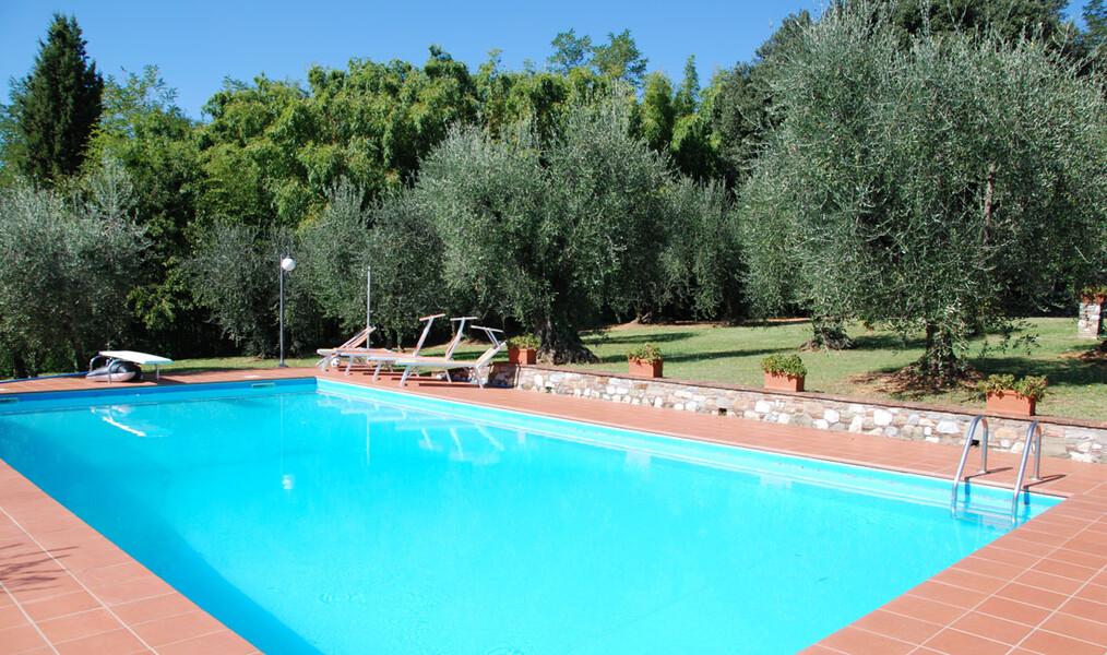 Pool zur Alleinnutzung mit Olivenbäumen im Ferienhaus Casa Tonio in der Toskana