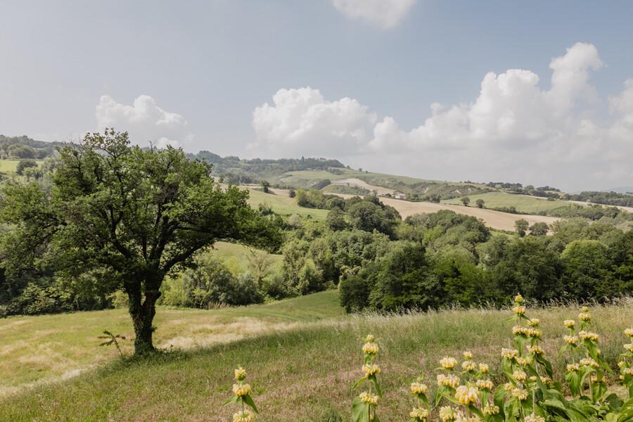 Natur in Italien in der Casa Sorbolongo