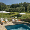 Private pool in the middle of the olive trees in Umbria