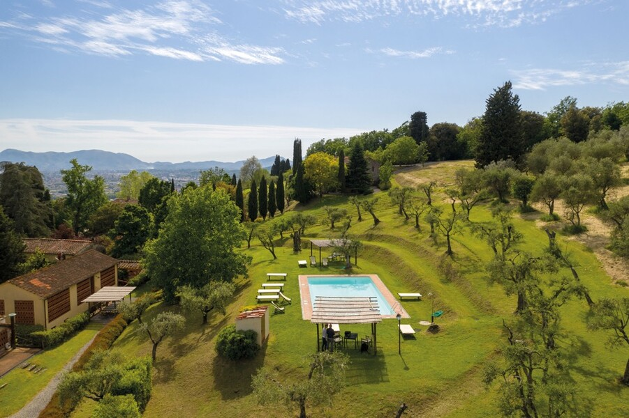 Der Park mit Olivenbäumen des Le Casine lädt zu entspannten Stunden ein