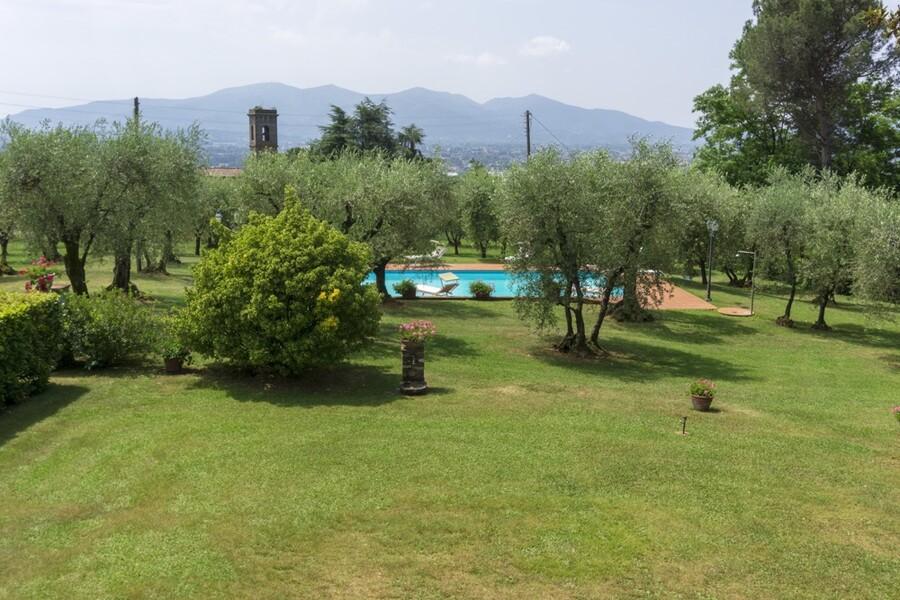 Garten mit Olivenhain und privater Pool in der Casa Tonio bei Lucca